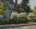 Bungalow and White Roses  16 x 20 Oil
