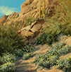 Canyon Brittlebush  10 x 10 Oil