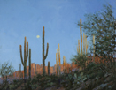Early Desert Moon - Sabino Canyon  11 x 14 Oil