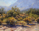 Hazy Desert Dawn  16 x 20 Oil - Salon International