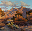 Sonoran Sundown Patina  20 x 20 Oil