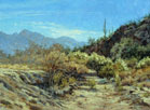 Sunwashed Desert Broom 22 x 30 Oil