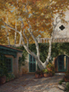 Tlaquepaque Sycamore #2  40 x 30 Oil Commission